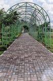 Grön trädgårds- port Arkivbild