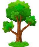 grön trädtecknad film Royaltyfri Foto