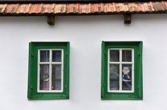 Grön träfönsterram för klassiker på ett byhus Arkivfoto