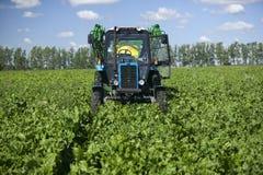 grön traktor för fält Arkivbild