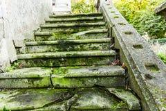 Grön trappa Arkivfoto