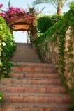 Grön trappa med blommor på båge och blått sly Arkivfoton