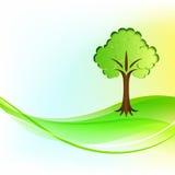 grön tree för bakgrund Royaltyfria Bilder