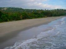 Grön tropisk skog och stranden under solnedgång royaltyfri bild