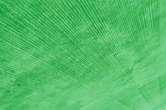 Grön trottoar royaltyfri fotografi