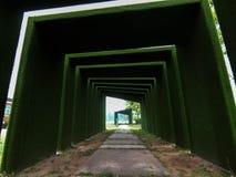Grön tunnel som väg till paradiset Royaltyfri Foto