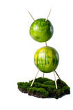 Grön uppehälle 2 royaltyfria bilder