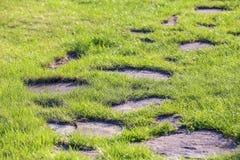 grön väg fotografering för bildbyråer