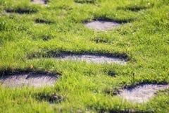 grön väg arkivbilder