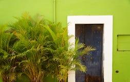 Grön vägg 1 Arkivfoto