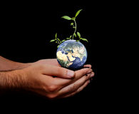 grön värld royaltyfri foto