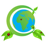 grön värld arkivfoto