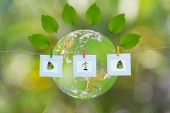 Grön värld med ramnaturen och tjänstledigheter runt om världen, grön bakgrund, arkivbild