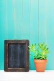 Grön växt bredvid svart tavlabenägenhet på väggen Royaltyfri Bild