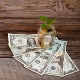 Grön växt i den glass kruset med lös ändring (ryska rubel) och dollar Royaltyfri Bild