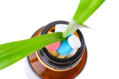 Grön växt i flaska med preventivpillerar Arkivfoton