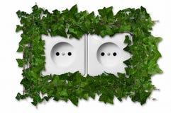 Grön växt som växer från vägguttag Royaltyfri Bild