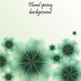 Grön vårbakgrund med genomskinliga blommor Royaltyfria Bilder