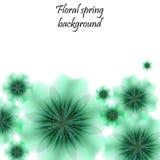 Grön vårbakgrund med genomskinliga blommor Arkivfoto