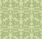 Grön vårrismodell Royaltyfri Fotografi