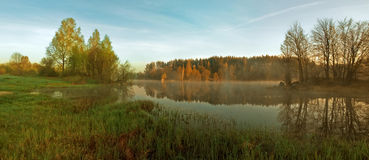 Grön vårskog Great Blue River och grönt fält panorama Arkivfoto