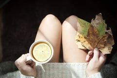 grön varm tea Arkivfoto