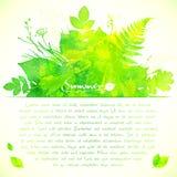 Grön vattenfärgsommar lämnar hälsningkortet vektor illustrationer