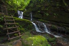 Grön vattenFall Arkivfoton