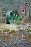Grön vattenhjul Arkivbilder