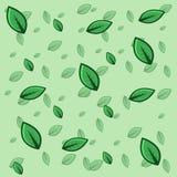 Grön vektor för bladmodellbakgrund Royaltyfria Bilder