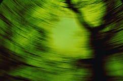 Grön virvel Arkivbild