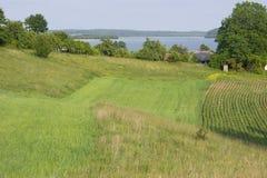 grön wigry lakeliggande för fält arkivbilder