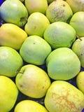 grön yellow för äpplen Arkivfoto