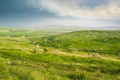 Gröna ängar under den molniga himlen Arkivbilder