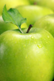 Gröna äpplen royaltyfria foton