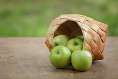 Gröna äpplen i en birchbarkkorg Royaltyfri Bild
