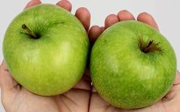 Gröna äpplen som rymms i händer royaltyfria bilder