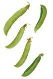 gröna ärtor Arkivbild
