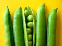 gröna ärtor Fotografering för Bildbyråer