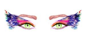 Gröna ögon med makeup-, apelsin-, rosa färg- och blåttvingar av fjärilen formar ögonskuggor stock illustrationer