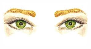Gröna ögon med naturlig mjuk makeup, mjuka pastellfärgade ögonskuggor, mascara, bruna ögonbryn, hand målad vattenfärgmodeillustra vektor illustrationer