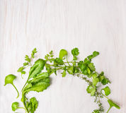 Gröna örter på den vita trätabellen Arkivfoton