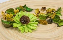 Gröna aromatiska torkade aromatiska blommor för örter på träbakgrund Arkivfoto