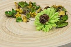Gröna aromatiska torkade aromatiska blommor för örter på träbakgrund Royaltyfria Bilder