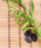 Gröna bambu- och brunnsortstenar på matt bambu Arkivbild