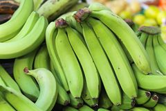Gröna bananer royaltyfri fotografi
