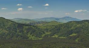 gröna berg royaltyfri bild