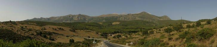 gröna berg Royaltyfria Foton