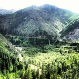 gröna berg Arkivfoton