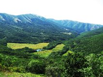 gröna berg Arkivfoto